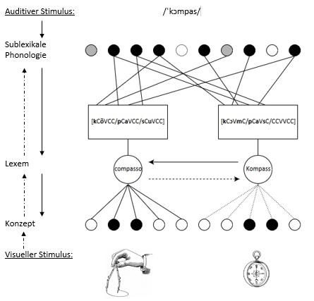crossmodales-modell-zur-auditiven-worterkennung-von-falschen-freunden-bei-mehrsprachigen