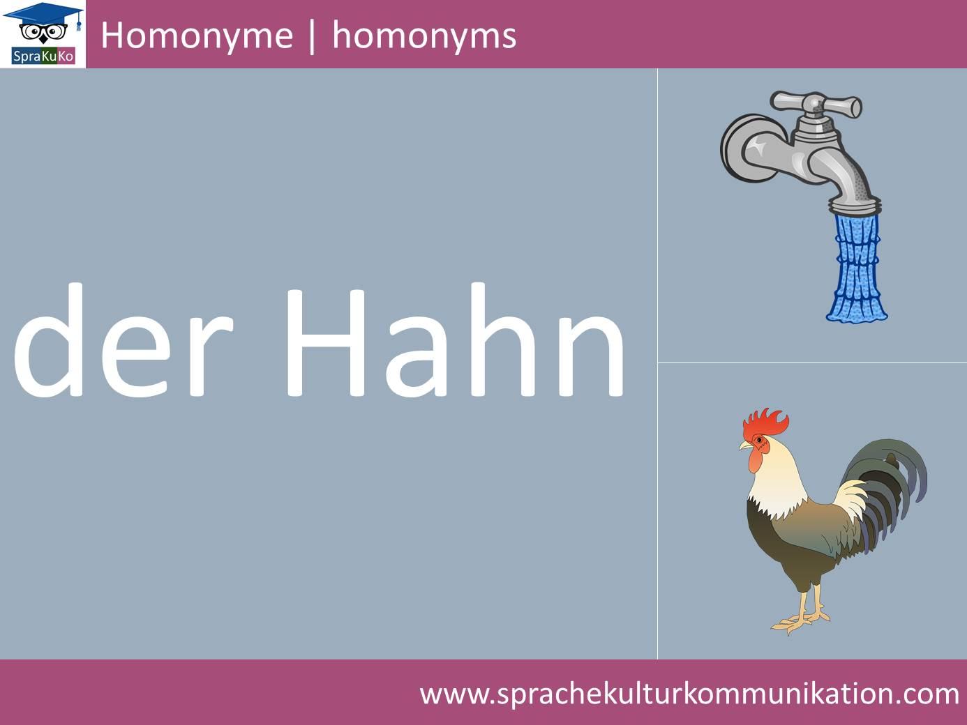 Wortschatz Homonym.jpg
