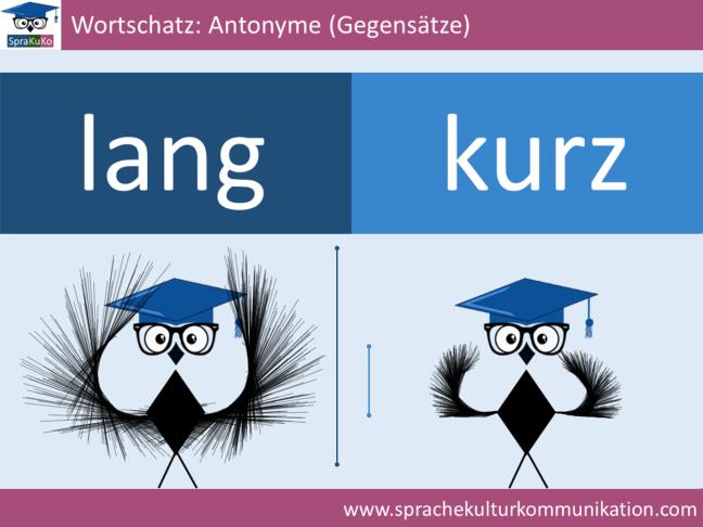 Wortschatz Adjektive Antonyme lang und kurz