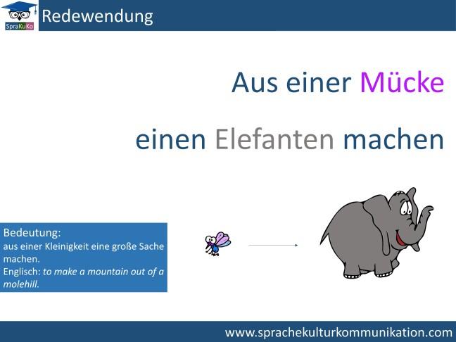 Redenswendung aus einer Mücke einen Elefanten machen