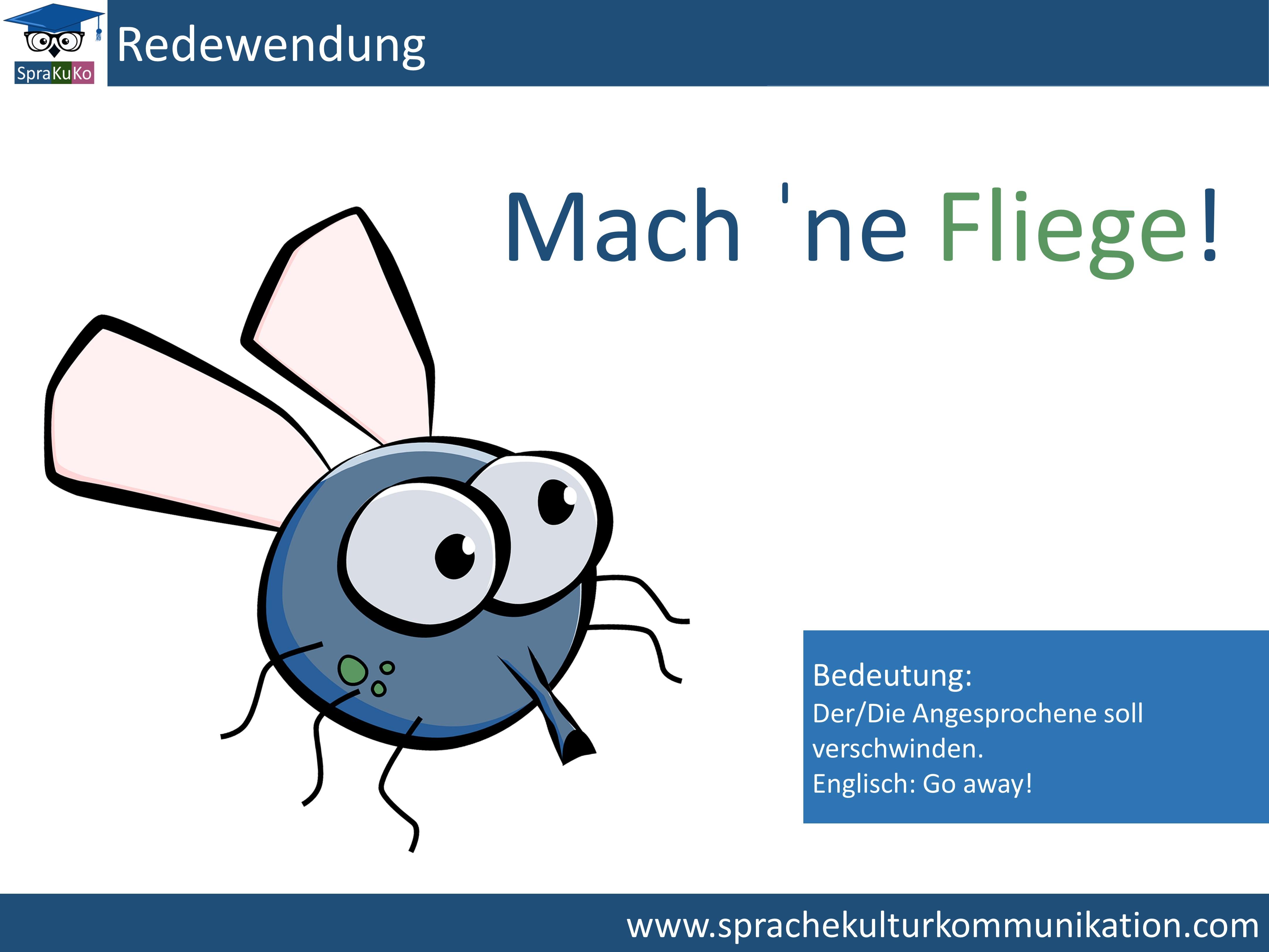 Redenswendung die Fliege machen.jpg